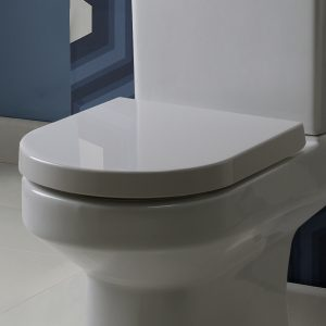 Roper Rhodes Toilet Seat Diode D Shape Soft Close in White