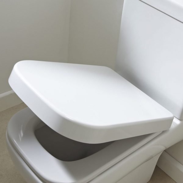 Linear Square Wrap Over Soft Close Toilet Seat In White Quick