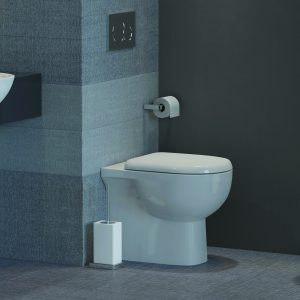 Toone Back To Wall Toilet & Seat