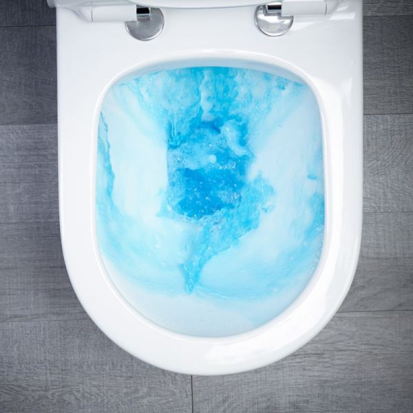 ESP Mini Rimless Fully Back To Wall Toilet & Soft Close Seat