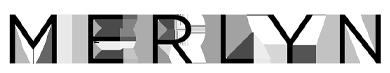 merlyn web logo