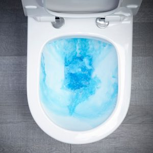 ESP Wall Hung Toilet & Soft Close Seat